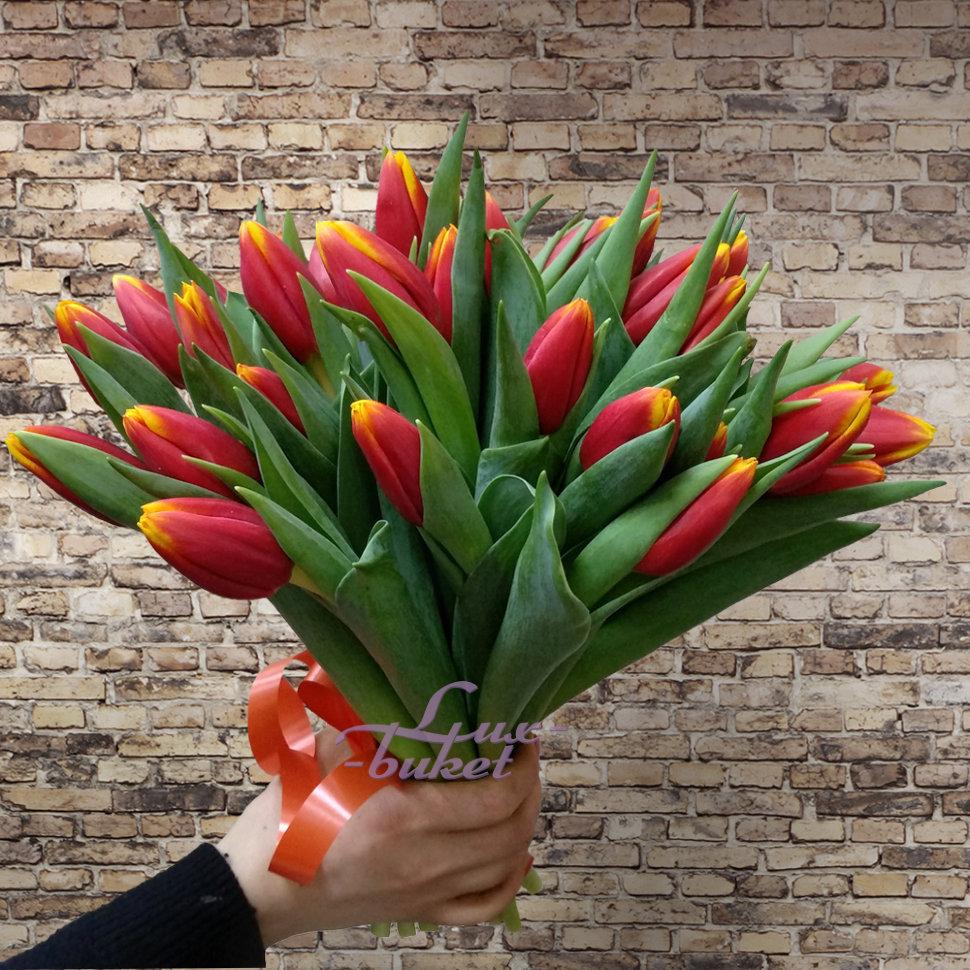 картинки тюльпаны желто красные в букете питире прибытию